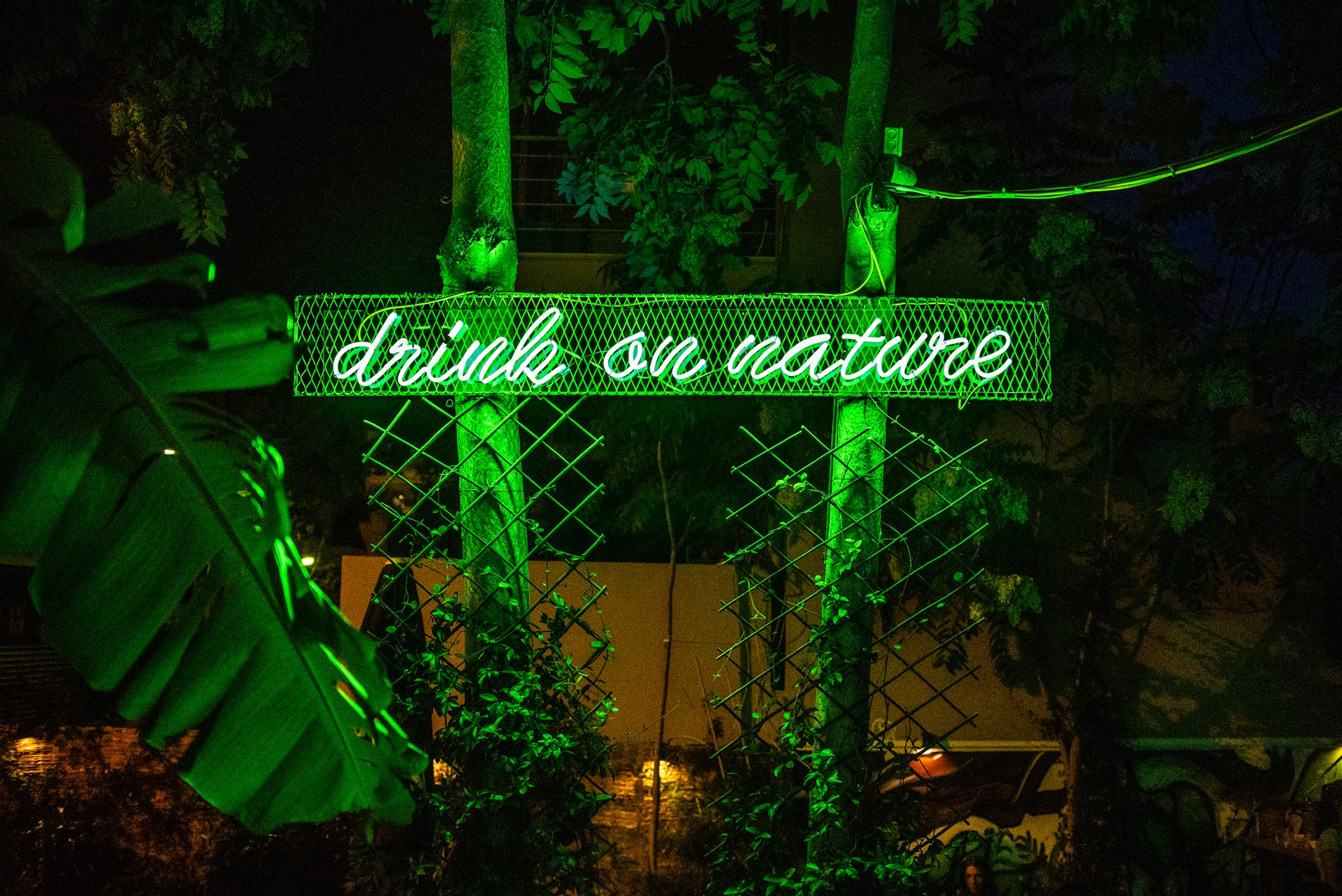 Drink on Nature